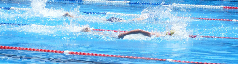 swimrace-coorect-size